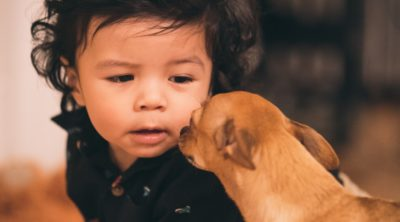 Puppy and young child